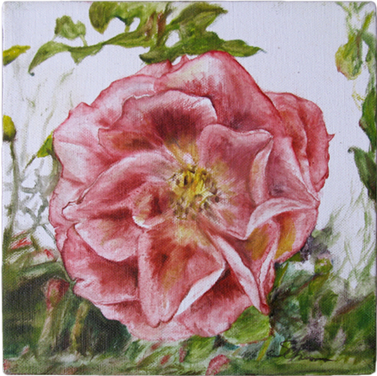 Heritage Rose 1 (Oil painting)